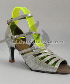 Giày khiêu vũ nữ B-04