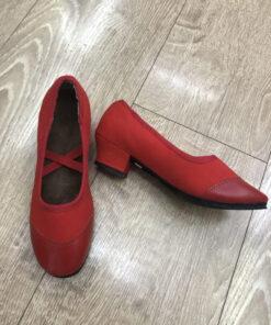 Giày tập khiêu vũ nữ TS155