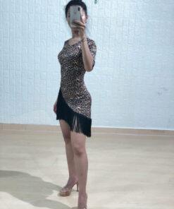 Đầm khiêu vũ VL340N